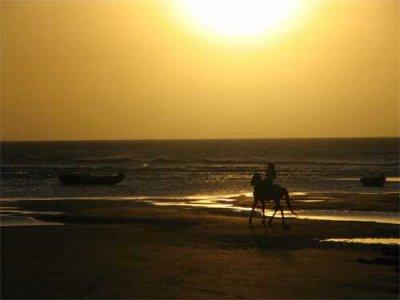 Lance ton coeur par dessus l'obstacle et le cheval suivra.