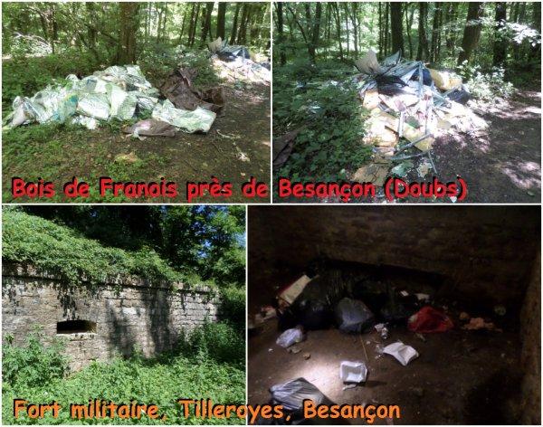 Près de Besançon, les forêts servent de poubelles !