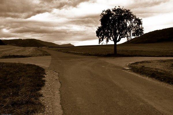 Au croisement des chemins...
