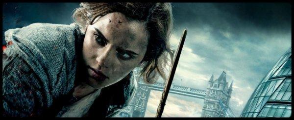 - Hermione Jean Granger -