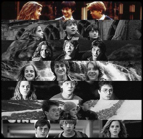 ~ Harry Potter à l'école des sorciers.