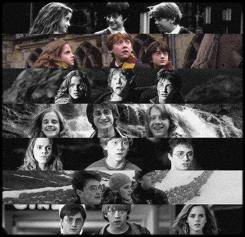 ~ Harry Potter et la chambre des secrets.