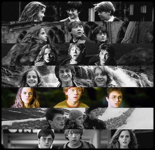 ~ Harry Potter et l'ordre du phénix.