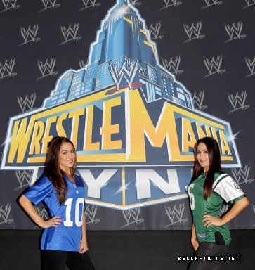 The Bellas Twins