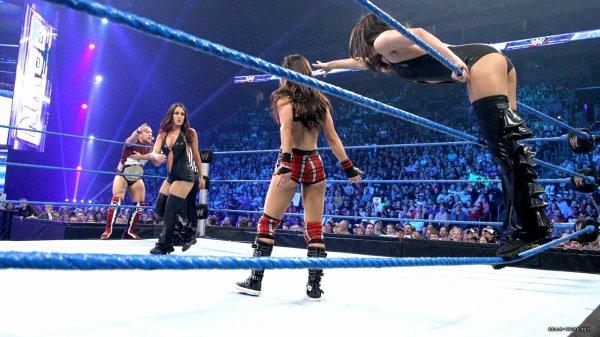 Nikki Bella vs Aj.Lee