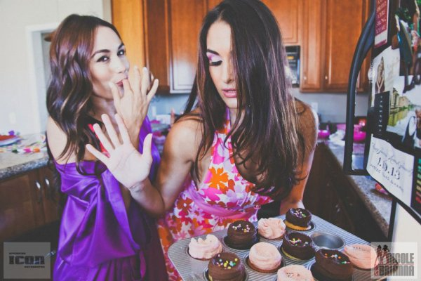 The Bella Twins (3)