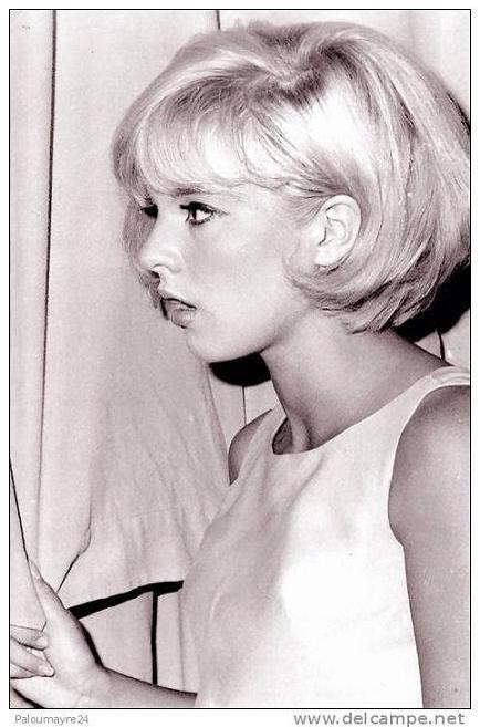 Années  1963-64