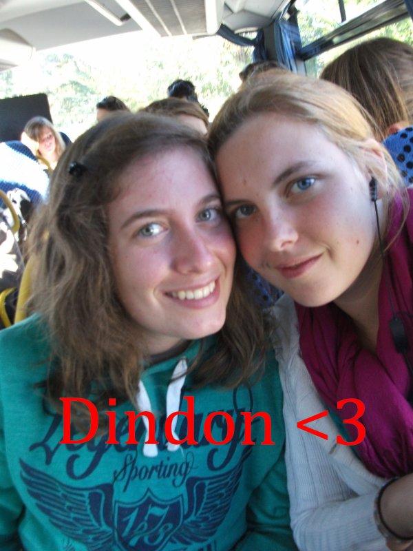 Mon Dindon ♥