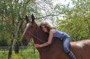 Photo de Mon-cheval--pas-un-autre