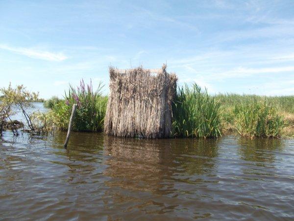 hute de chasse aux canards