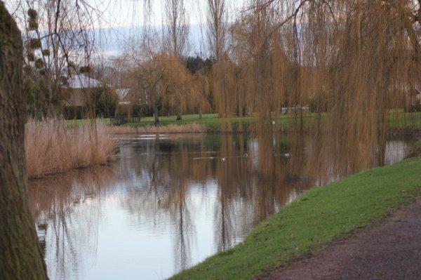 la rivière morte de st arnoult (14)