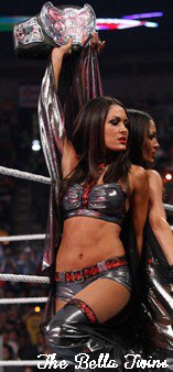 """I""m Brie , I'm Nikki and We Are The Bella Twins"" , The Bella Twins"