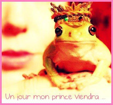Un jour mon prince viendra...