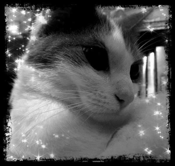 Ma Princesse à moi... ^^