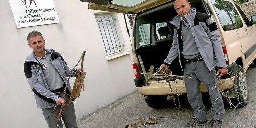 Gard : Le braconnage est en recrudescence dans le département.