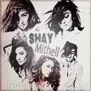 icon - MitchellShays