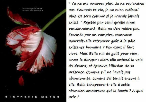 Twilight resume du livre