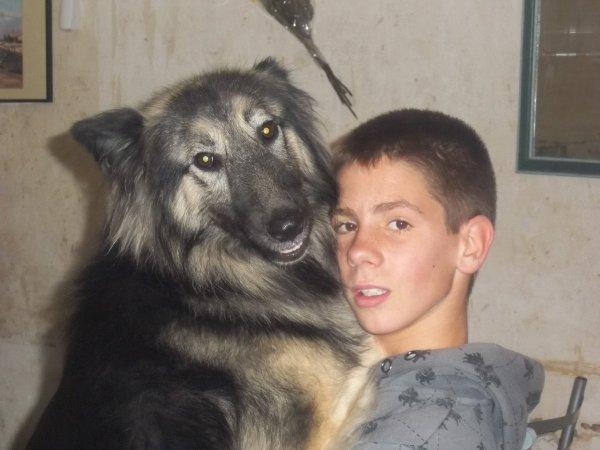 (l)(l)ma chienne,punkie(l)(l)