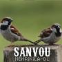 нeɴrιĸιlα / Sanvou (2011)
