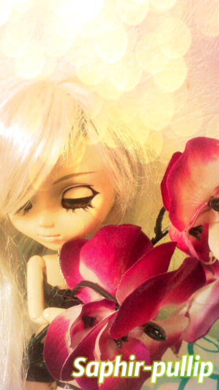 Concours de May-doll ^~^