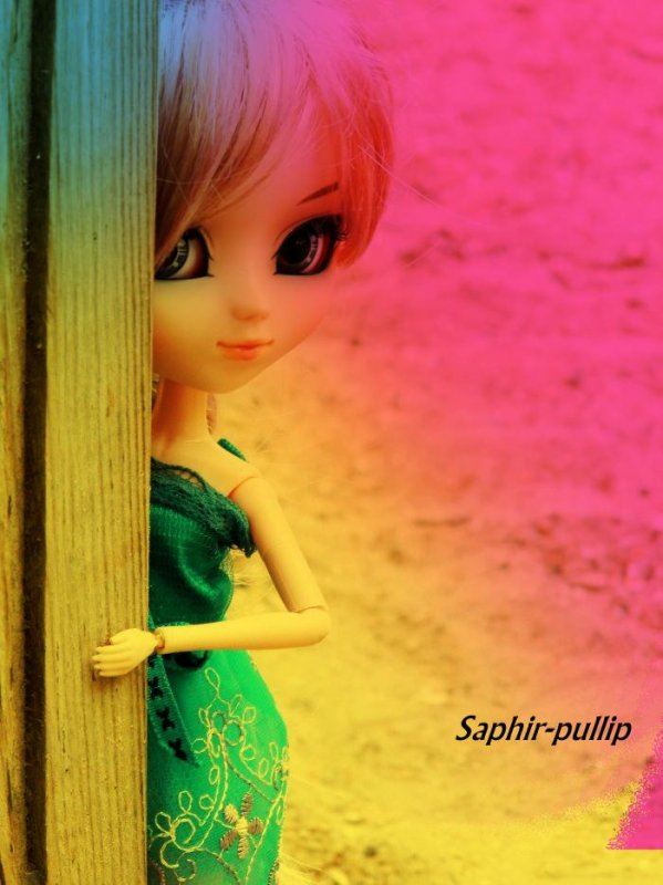 Ma quatrième Pullip//Tsukimi (Banshee)//La Guitariste//