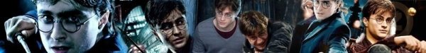 Qu'est qu'un blog sur Harry Potter, sans la Biographie d'Harry Potter ????