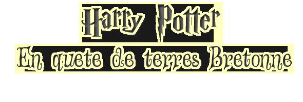 Harry Potter à l'école des sorciers en Breton, ça donne ça :D