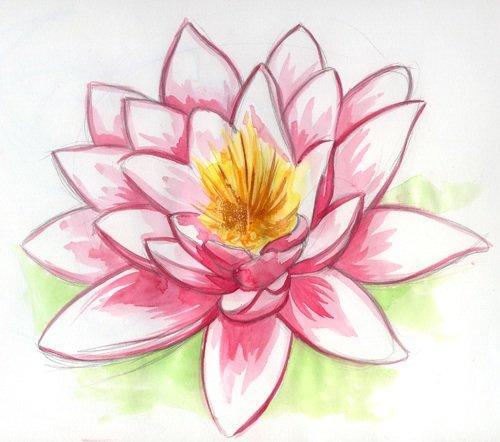 Image de fleures, sous toutes leur formes ...