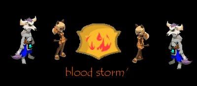 la guilde blood Storm'