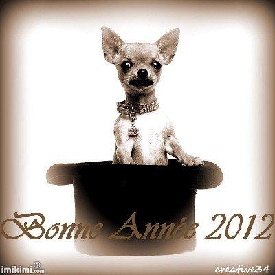 Ma troupe et moi vous souhaitons une bonne année 2012