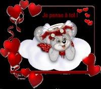 Mon Dernier Amour,