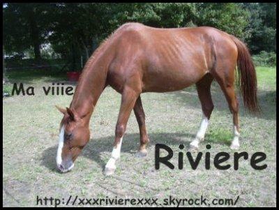 Riviére