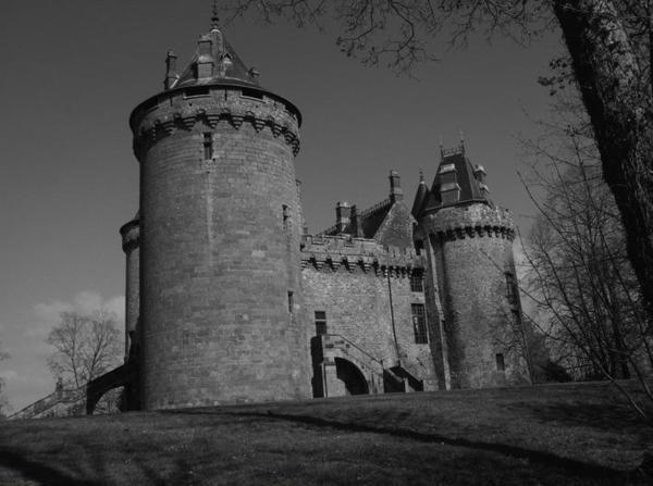 Le chat du château de Combourg