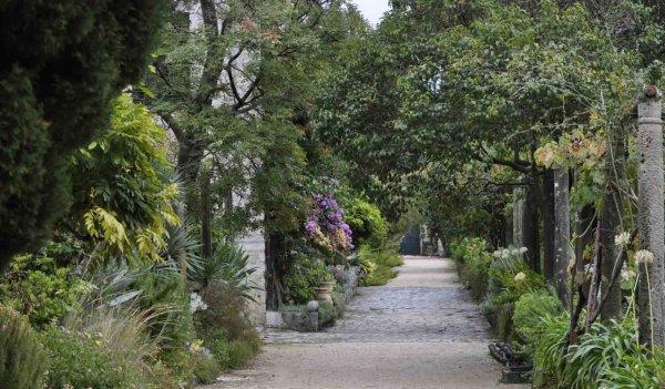 l'arboretum de Trsteno un ancien village de marins situé à 19km au Nord-Ouest de Dubrovnik