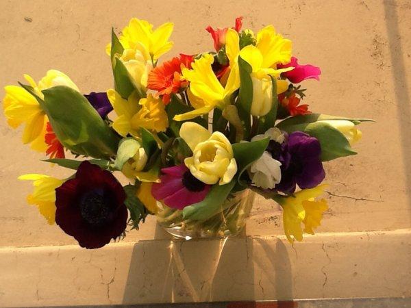 Les fleurs du printemps ......