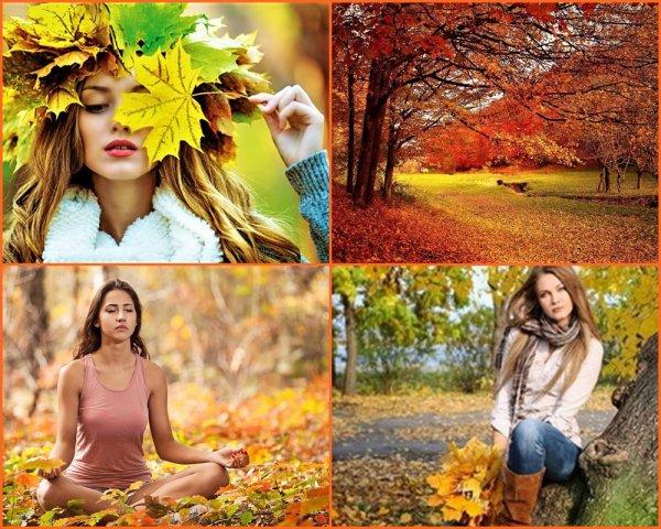 Les belles couleurs de l'automne ,elles sont chatoyantes ... Bises de Claudie