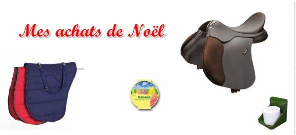 Vacances de Noel --> Suite