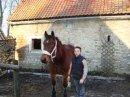 Photo de equitation62132