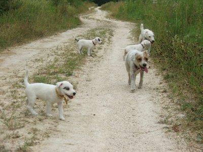 9 juillet 2010 : promenade en famille