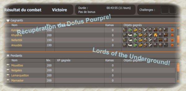 Dofus pourpre / stuff / reccord !!