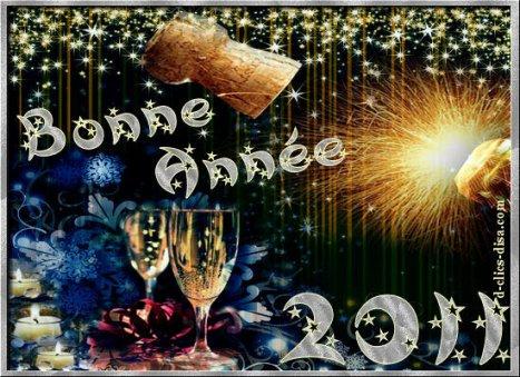 Bonne et heureuse Année 2011!