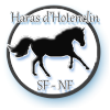 Sims-3-Haras-d-Hotenclin