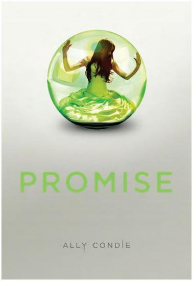 Promise - Ally Condie