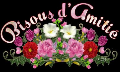 MERVEILLEUX KDOS DE  MON AMIE FAN D ELSA AMIR MERCI