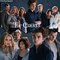 Photo de Twilight-x2