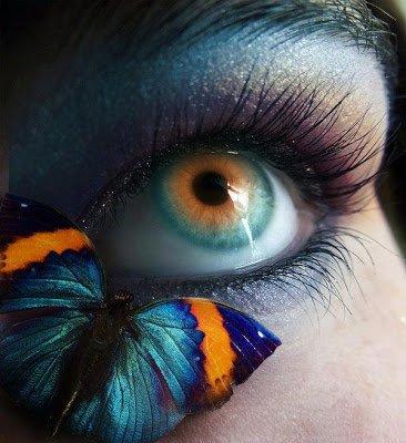 BON MARDI A TOUS ET TOUTES, Images Love / Romantic, Nature § Diapo. Nature Images,et Divers § Bienvenue - Amitiés .