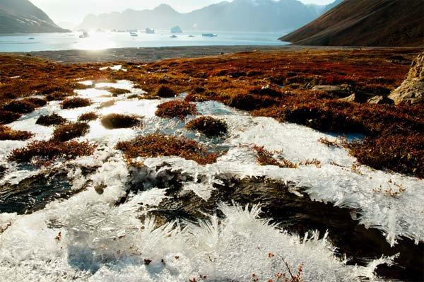 La Fonte des glaces et l'inquiétant réveil des anciens virus
