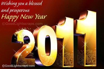 Voeux de 2011!!!