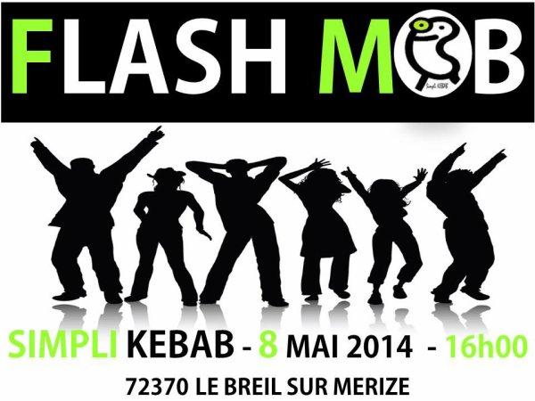 FLASH MOB LE 8 MAI 2014 A 16H AU BREIL SUR MERIZE