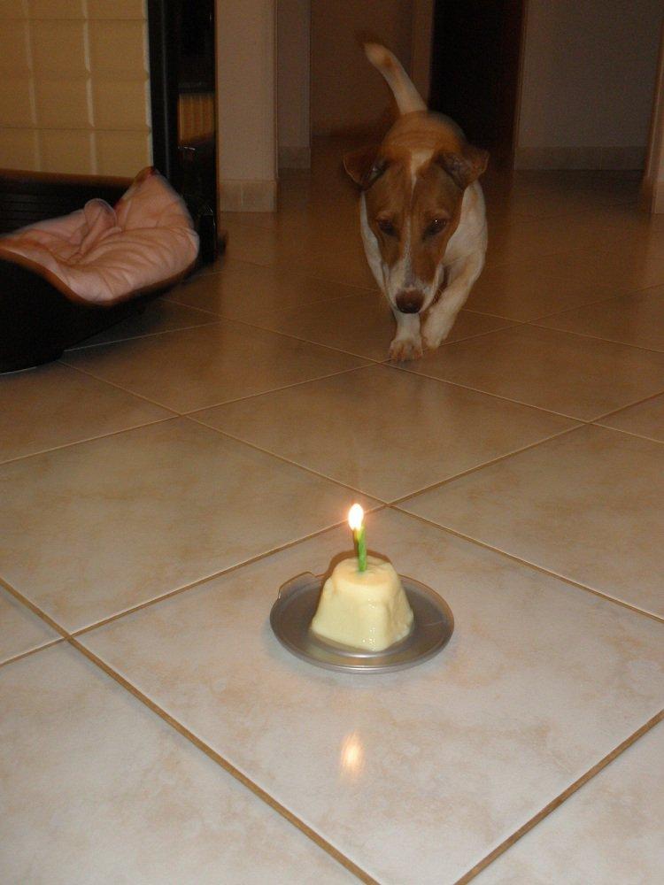 MO   -sretan rođendan